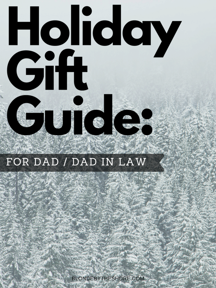 Holiday Gift Guide: Dad/DIL